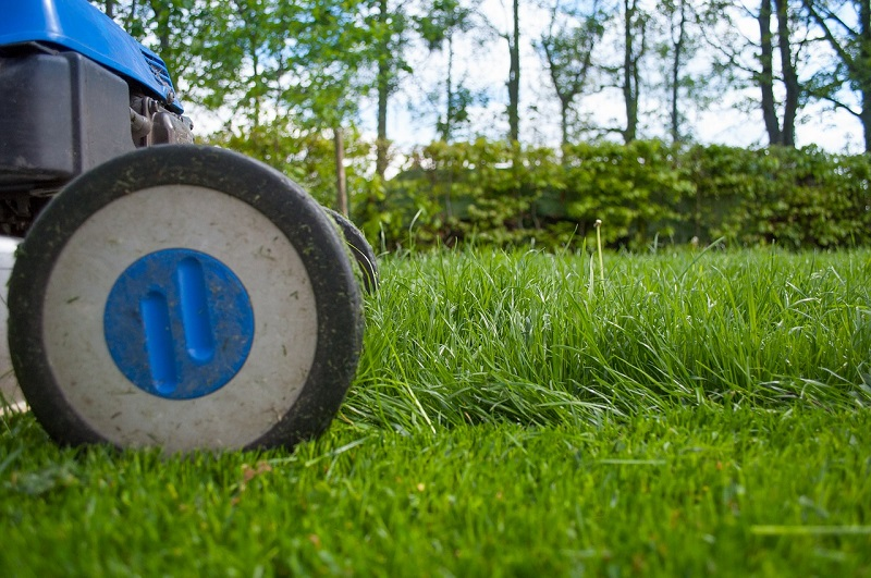 How to select the best Landscaping Service provider for Gardens?