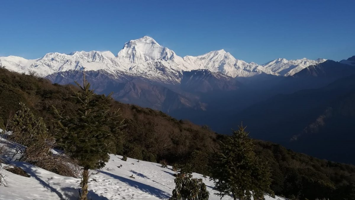 Trekking Packages of Nepal
