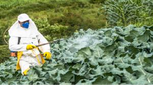Crop Protection Chemicals Market Revenue