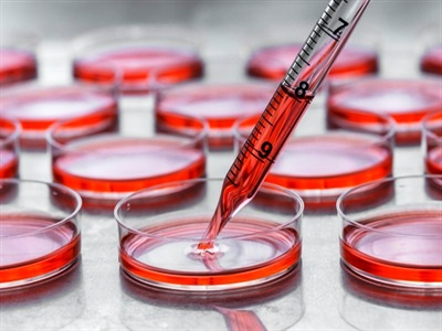 Increasing Trends In The Cell Culture Market Outlook: Ken Research