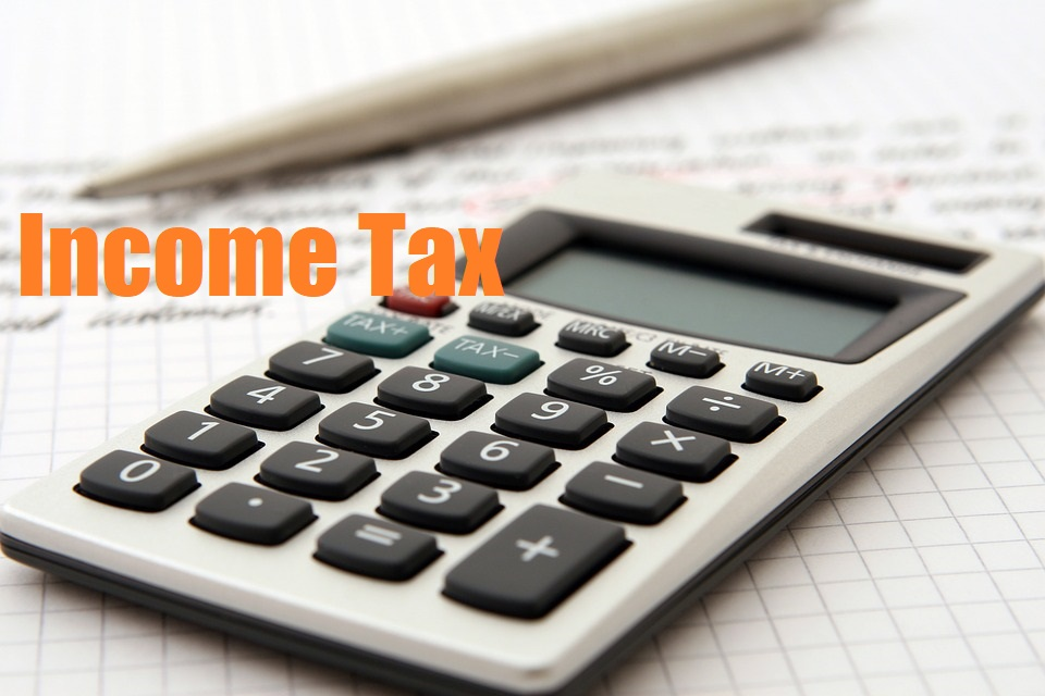 How to use the income tax calculator?