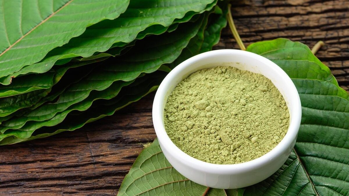 Finding the Right Kratom Wholesalers: Factors to Consider