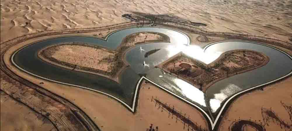 Dubai's Great Outdoors – Al Qudra Desert and Lake