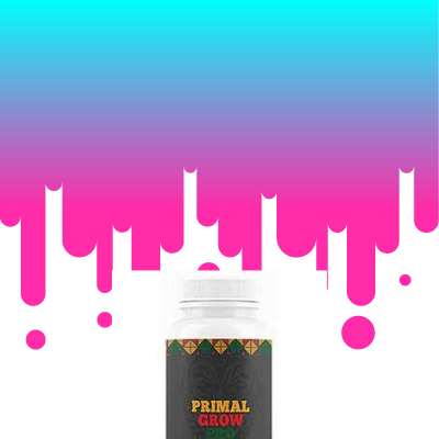 Get a Increase in Your Sexual Power Only By Ordering Primal Grow Pro
