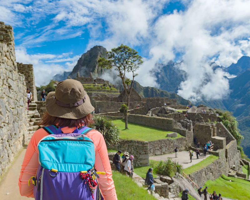 where to book trips online