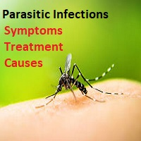 Parasitic Infections: Symptoms, Causes & Treatment- Online Drug Pharmacy in USA
