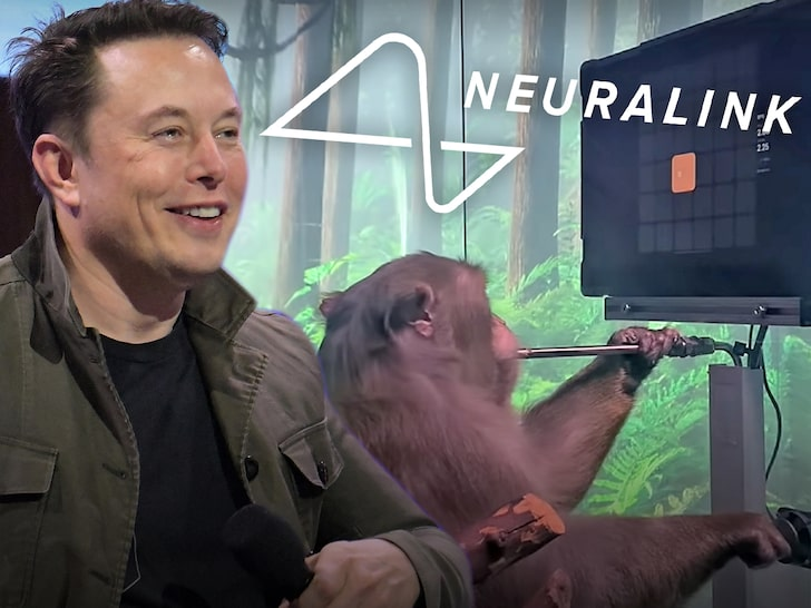 Monkey Plays Pong With Neuralink