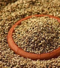 carom seeds benefits