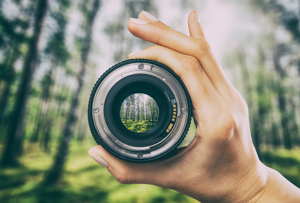 Creative Photography – Things A Successful Photographer