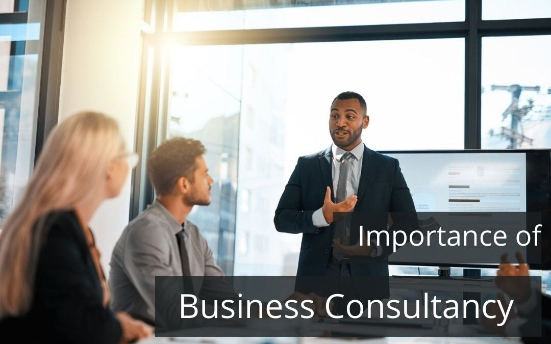 Why Should I Need Business Consultancy Services in Dubai?